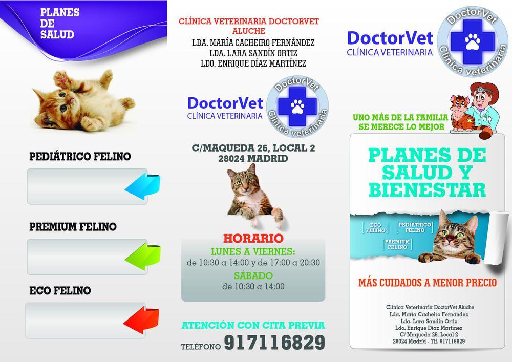 Triptico pets aluche_GATOS_exterior_Sept 2020_02-01